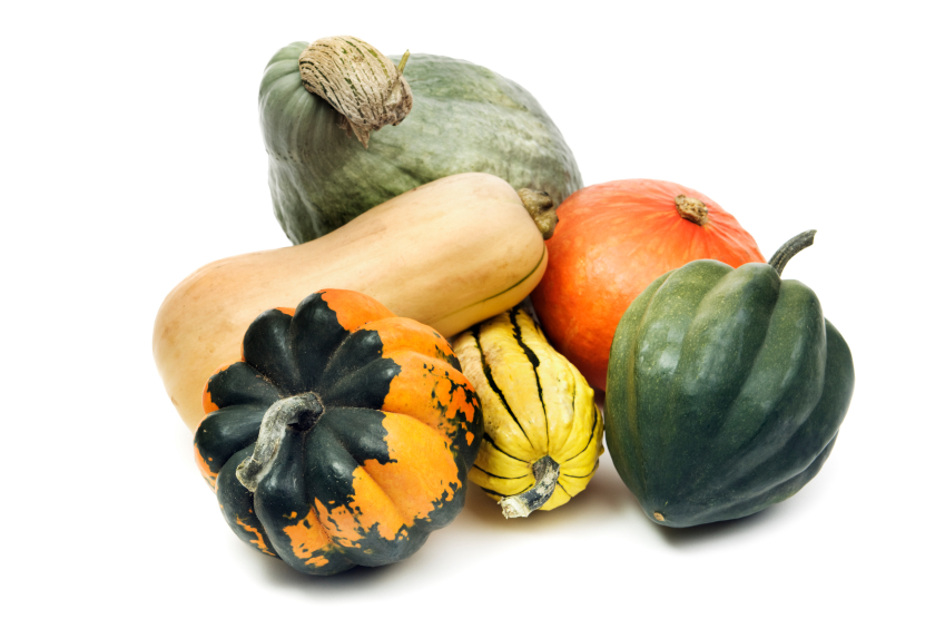 Image result for image winter squash